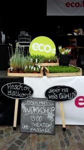 Balkongärtnern Workshop am eco.festival 2016